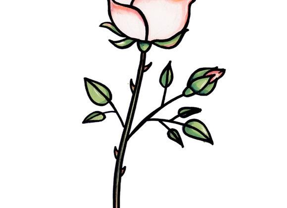 BLOMST - ROSE