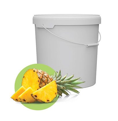Magaya Foods - Pineapple Marmalade 48 Lbs