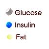 glucose insulin fat