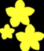 plumeria-spray-3_edited.png