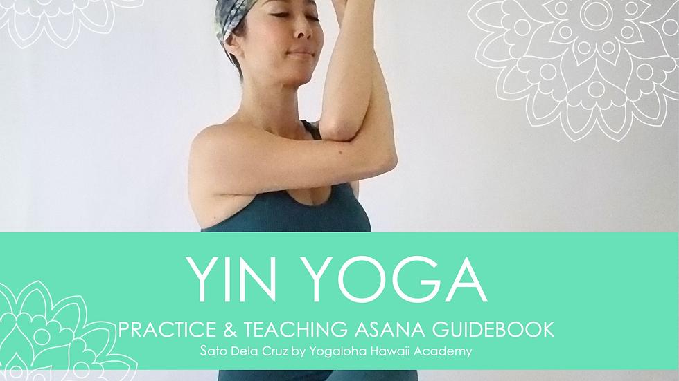 Yin Yoga Practice & Teaching guidebook