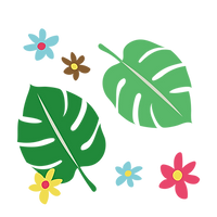 _Monstera-01-1.png