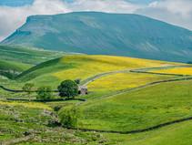 Influences - Yorkshire Dales