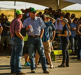 Drone Rodeo Crowd.jpg