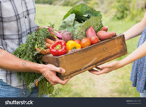 stock-photo-farmer-giving-box-of-veg-to-