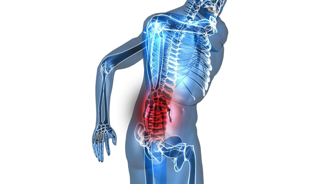 Chiropractic Assesmennt