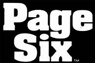 Page Six Logo.jpg