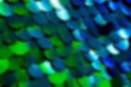 I-Peacock07.jpg