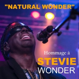 StevieWonderNaturalWonder-400-277x277