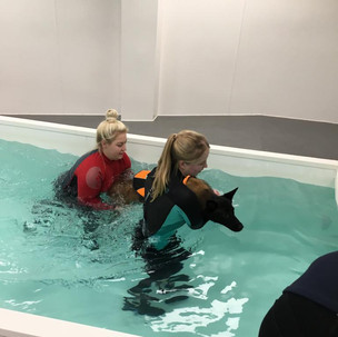 Hydrotherapy whilst at University