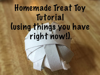 Homemade Boredom Buster Treat Toy Ball for Pet Rats and Other Small Animals