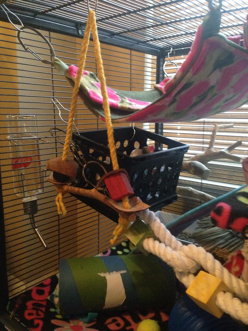 Fleece rat hammocks, a box with fleece scraps, rope, climbing tree, tunnel and water bottle.