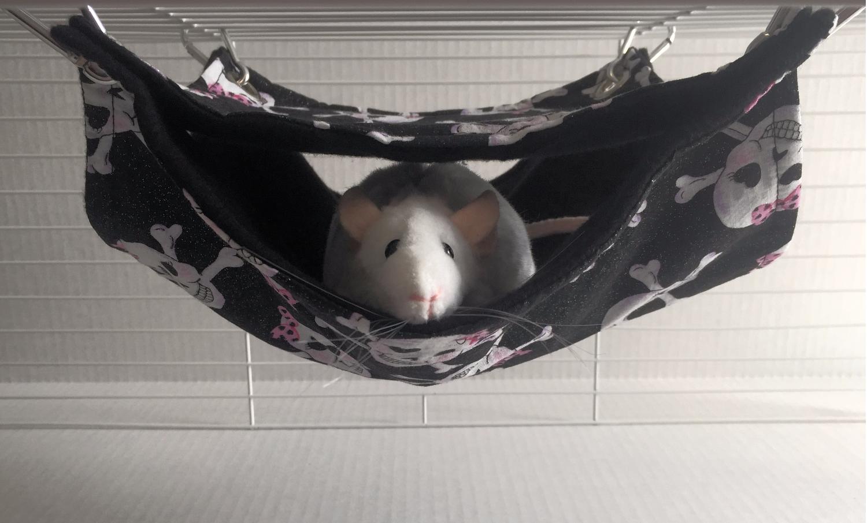 Double bunk pet hammock