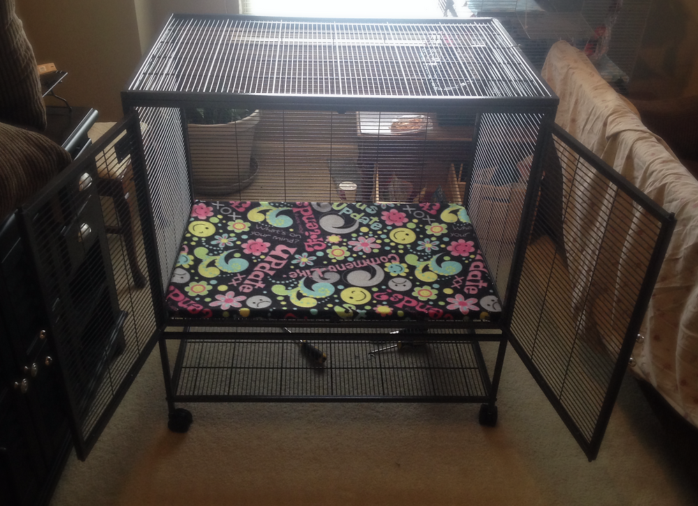 Fully assembled Critter Nation cage without the shelf installed