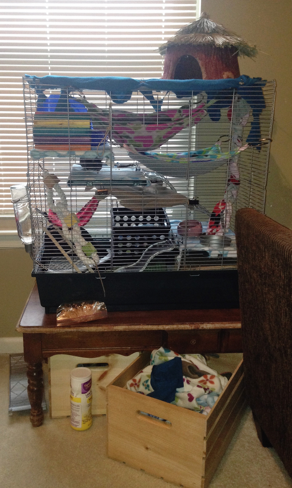 My older pet rats cage was a serious mess! This is the Kaytee Multi-Level Small Animal Exotics Cage
