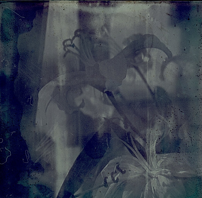 Physical Theatre : polaroid flower Punctum