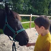 thérapie_avec_le_cheval_Résilienfance.jp