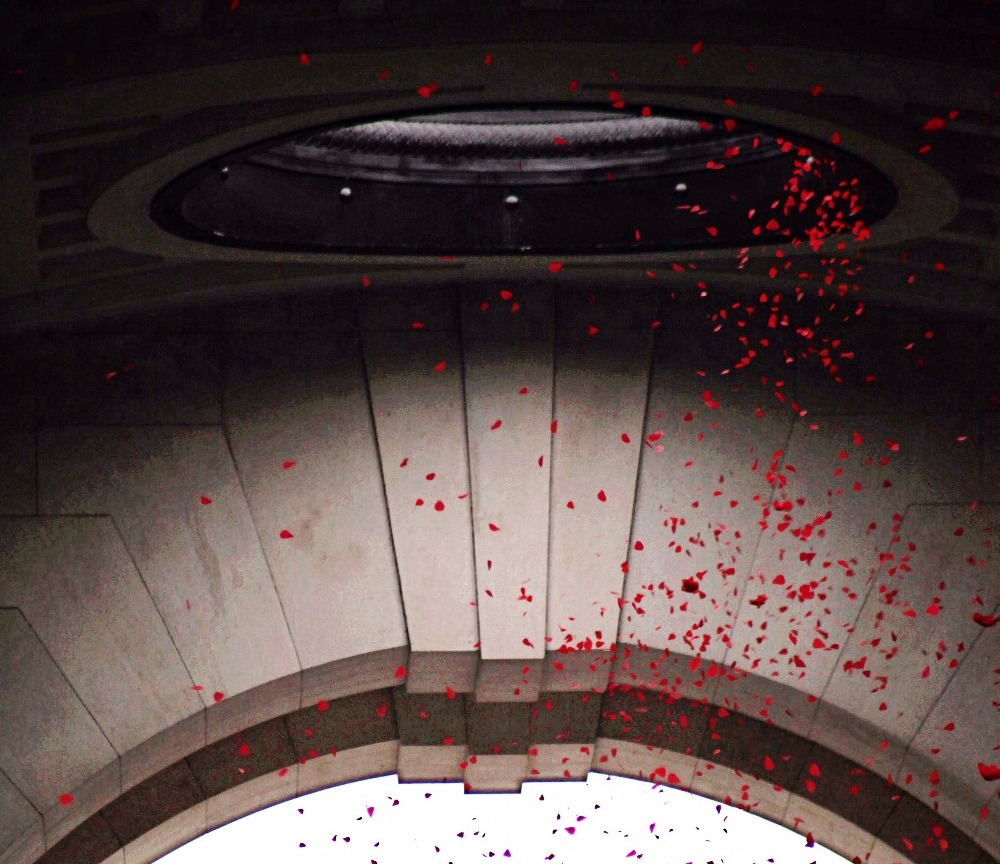 At 11am, poppies fall from the Menin Gate at the Last Post, in Ypres, Flanders, Belgium. We were lucky enough to have Battlefield Traveller Phil Tucker join us on the Passchendaele 100 Tour, to capture this incredible image.