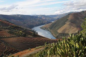 Valença_do_Douro.jpg