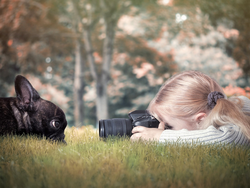 girl taking photo of french bulldog