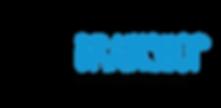 Brainshop logo diff tag.png