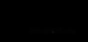 Brainshop logo BLACK.png