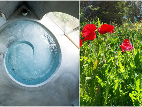 Transformation by Fire & Water ~ An Aletheia Springs Update
