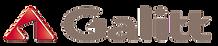 logo Galitt.png