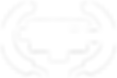 AUDIENCE CHOICE AWARD - FMAD Spring Show
