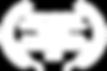 OFFICIAL SELECTION - Proceso de Error -