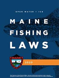 fishlawbookcover_2020.jpg