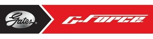Gates logo.jpg