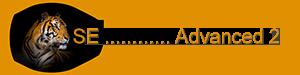 Logo-SE-Utb-Advanced 2-0300-0075.png