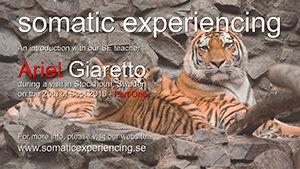 SE-Intro ved Ariel Giaretto-Del-01-0300-