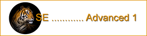 Logo-SE-Utb-Advanced 1-0300-0075.png