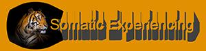 Logo-SE-Transparent-75-0300-0075-PNG.png