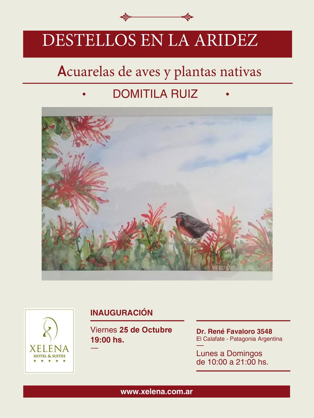 """Apertura de la Muestra artística: """" MIRANDO LAS AVES Y LAS FLORES""""- Acuarelas de Aves y plantas nati"""