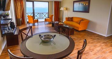 suite presidencial hotel xelena