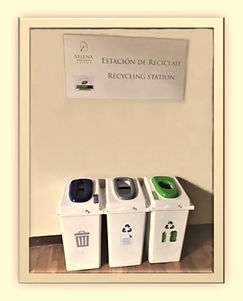 cesto reciclado_Wondershare_Wondershare.