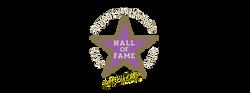Logo HoF Support Live Events Stern