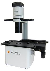 蛍光観察向け緑色蛍光顕微鏡 - LS560