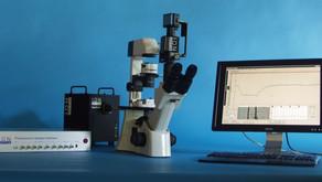 単離心筋細胞のカルシウム・収縮性の計測が可能です
