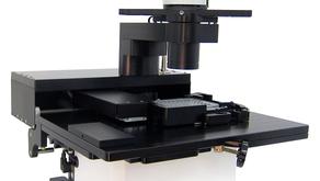 世界で最もコンパクトな蛍光顕微鏡で蛍光観察を!