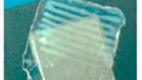 配向性材料特性を備えた3Dヒドロゲルのバイオプリンティング