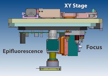 蛍光顕微鏡のモーションコントロール