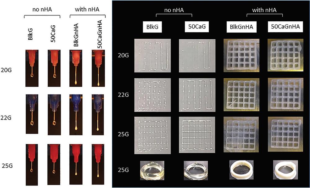 血管構造の3Dバイオプリント用のバイオインクブレンド