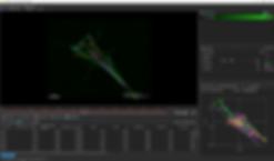 蛍光顕微鏡ソフトウェア Lumaquant Particle-tracking-analysis-red