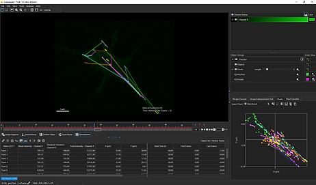 蛍光顕微鏡 迅速な画像分析
