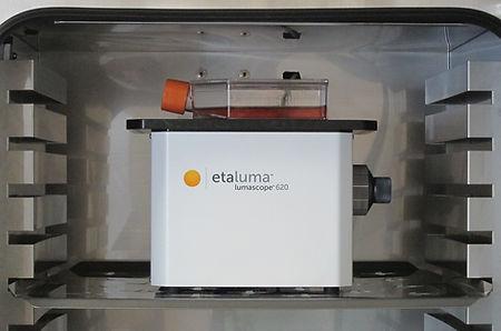 インキュベーター蛍光顕微鏡 - LS620