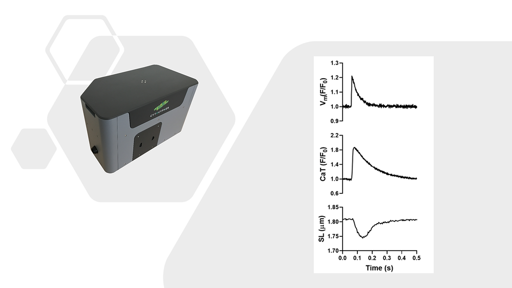 ボルテージ、カルシウムと収縮性の同時計測